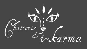 Elisabeth MORIN - graphiste La Rochelle - logo Chatterie d'i-karma