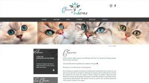 Chatterie d'I-Karma - maquette graphique site internet - Elisabeth MORIN graphiste La Rochelle