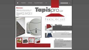 Tapispro - site internet - Elisabeth MORIN graphiste webmaster La Rochelle
